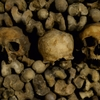 ぶらり欧州一人旅 6日目 2つの墓地とエロティズム博物館