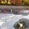 【京都】【御朱印】東福寺塔頭、『龍吟庵』に行ってきました。 京都観光 京都旅行 女子旅 主婦ブログ