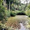 千貫森 小手神社の池(仮称)(福島県福島)