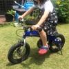 【自宅で娘と自転車を塗装しました】d( ̄  ̄)