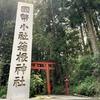 【GOTO旅】箱根神社入口周辺を散策した