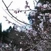 井原山を歩くwith脊振山 -2020.02.23(sun)-