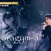 【動画】Dimash カザフコンサート60周年記念コンサート
