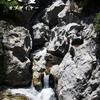 愛媛の山の中でひっそりと甌穴は群を成す。
