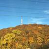 北海道へ。きれいな景色編