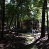 吉野町国栖の大蔵神社は最強の秘境神社か