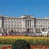 イギリス王室に電話…☆