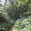 至近距離でクマに遭遇する;広島・島根県境の天狗石山