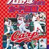 The Average Length of Japan Baseball (NPB) Games, 2018