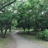 神奈川県 大和市 ふれあいの森| 買い物ついでに【森林浴をしよう!】