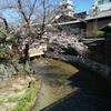 名大生の一人旅 神社仏閣を巡らない京都(1日目)