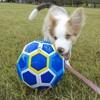 ベルとサッカー!