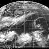 屋久島カレー事情 第31回 梅雨空に割りてすがしきカレーパン 「モーニングカレーパン」