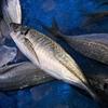 高血圧対策におススメの食べ物「魚介類」~アジ、イワシ、サンマなど