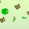 こん虫成長プログラム