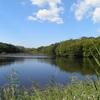 野幌森林公園は楽しい!10 大沢の池に何が起きた?水が無い!