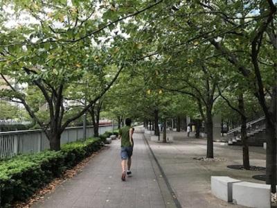 山手線一周走ろう⑥〜恵比寿駅から大崎駅まで~