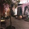 Andaz Tokyoでお花見しながら目標設定。
