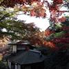 【Youtube更新】秋の限定公開、横浜三溪園の紅葉動画。