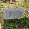 万葉歌碑を訪ねて(その408)―滋賀県米原市能登瀬 県道246沿い―