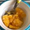 娘リクエストでオレンジシャーベット作りました