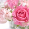 バラ色の人生 ~La vie en rose ~