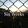 ブログを始めて6週間|PV数とか所感とか。