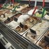 トロントでスイーツ食べるならDolce!選べるジェラート・アイスが人気のお店