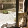 猫の網戸防止