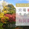 京都のど真ん中にある穴場紅葉スポット「仙洞御所」は本当にすごかった