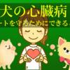 犬の心臓病 ハートを守るために一緒にできること