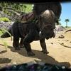 Ark攻略 パキリノサウルスをテイム、紹介