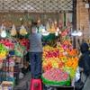 【28歳もテヘラン暮らし】中東イランで暮らしているわたしの、不思議な新婚生活の形