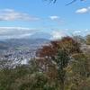ぽかぽかの権現山