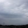 5月29日(水)曇り、梅雨入り