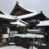雪を見に京都へ