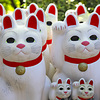 豪徳寺の御朱印(東京・世田谷区)〜「招き猫」と「ひこにゃん」の原点? 佳い正月を!