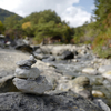 【草津】秋色に染まる、「西の河原」をのんびり散歩