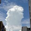 真夏日:曇ったり晴れたり
