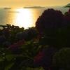 彦島から日没を