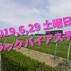 2019,6,29 土曜日 トラックバイアス予想 (福島競馬場、中京競馬場、函館競馬場)