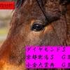 【ダイアモンドS2019】【京都牝馬S2019】【小倉大賞典2019】過去の傾向分析