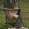 木を切る前に斧を研ぐ ~始める前の準備が大切~