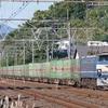 11月11日撮影 東海道線 大磯~二宮間 EF66-27の54レ、押し桃甲種、185系、215系、285系等を撮る