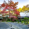 京都・亀岡 - 神蔵寺のイロハモミジ