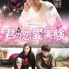 韓国ドラマ「君の恋愛実験 〜三つ色のファンタジー〜」感想 / ユン・シユン主演 薬の副作用で崖っぷちからの起死回生ストーリー