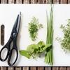 大葉の切り方 料理の基本