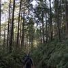 熊野古道とサンチャゴ巡礼道:二つの道の巡礼者 DUAL PILGRIM