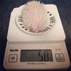 初めての体重測定