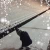 雪ーー!!